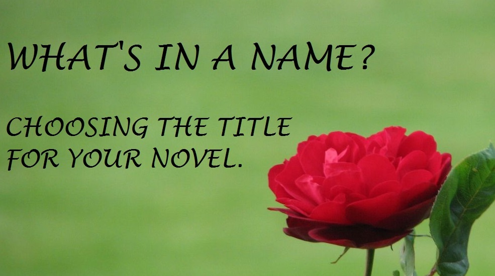 Choosing the title for your novel